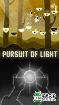 Скриншот Pursuit of Light №1