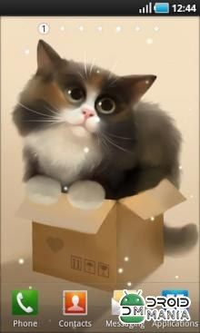 Скриншот Cat in the Box №1