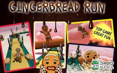 Скриншот Gingerbread Run №2