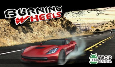 Скриншот Burning Wheels 3D №1