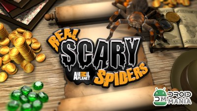Скриншот Real Scary Spiders №1