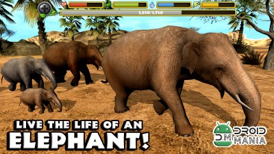 Скриншот Elephant Simulator №1
