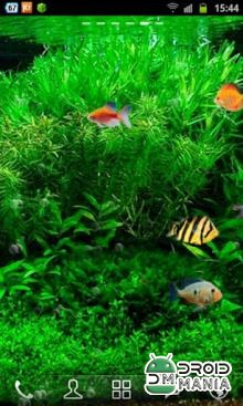 Скриншот Fish Tank 3D Live Wallpaper №2