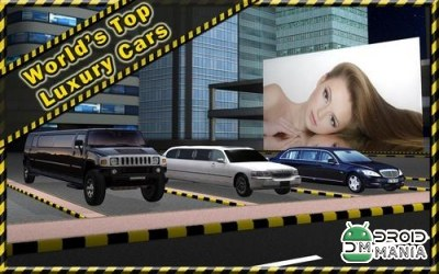 Скриншот Limousine Parking 3D №3