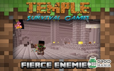 Скриншот Temple Survival Games №3