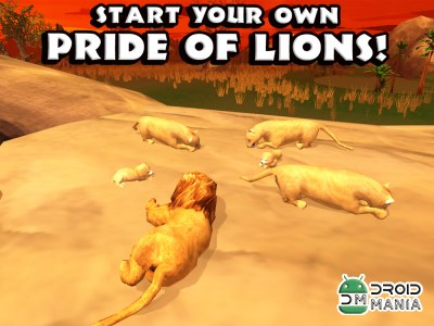 Скриншот Safari Simulator: Lion №3