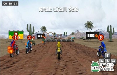 Скриншот Dirt Bike Racing №3