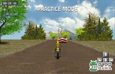 Скриншот Dirt Bike Racing №4