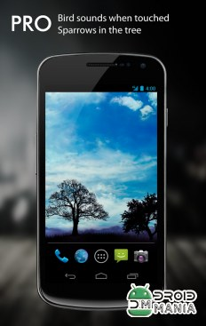 Скриншот Blue Sky Pro Live Wallpaper №4