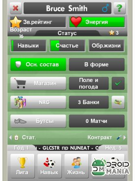 Скриншот New Star Soccer №2