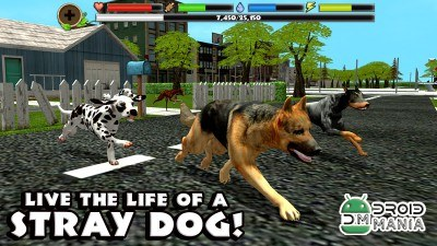 Скриншот Stray Dog Simulator №1