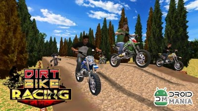 Скриншот Dirt Bike Racing 3D №1
