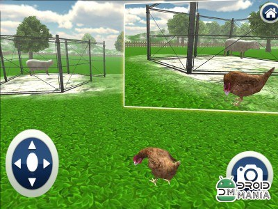 Скриншот Crazy Chicken Simulator 3D №3